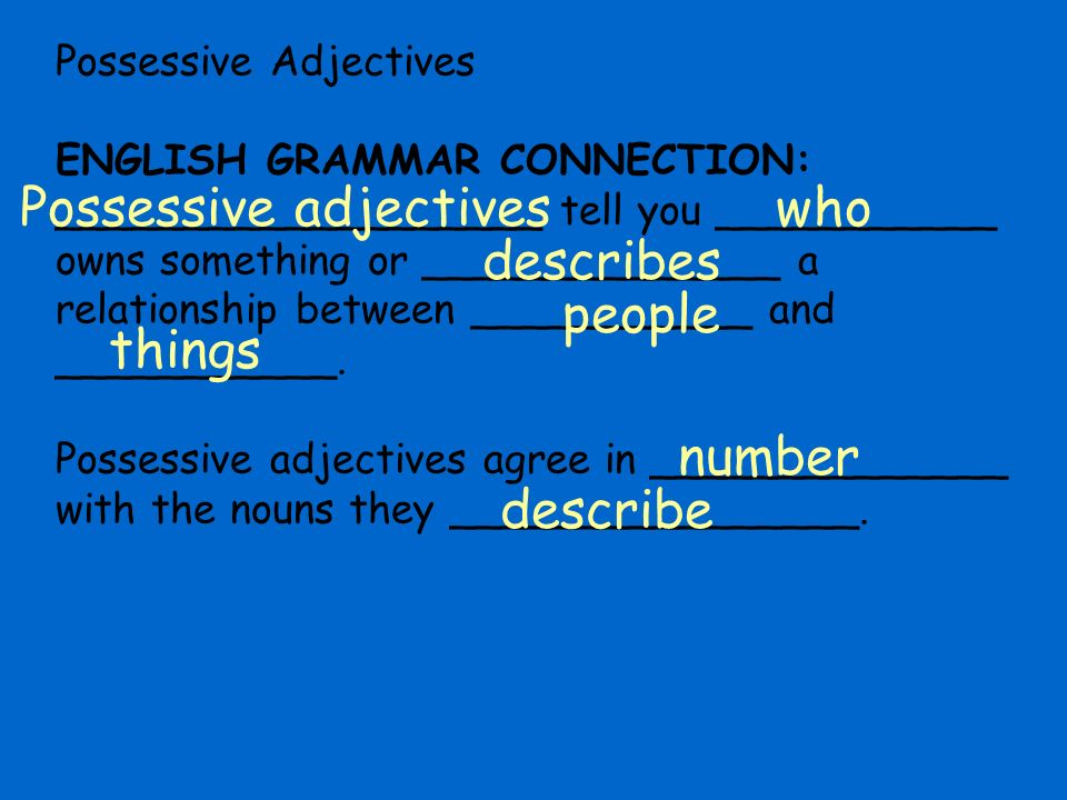 Possessive adjectives who describes people things