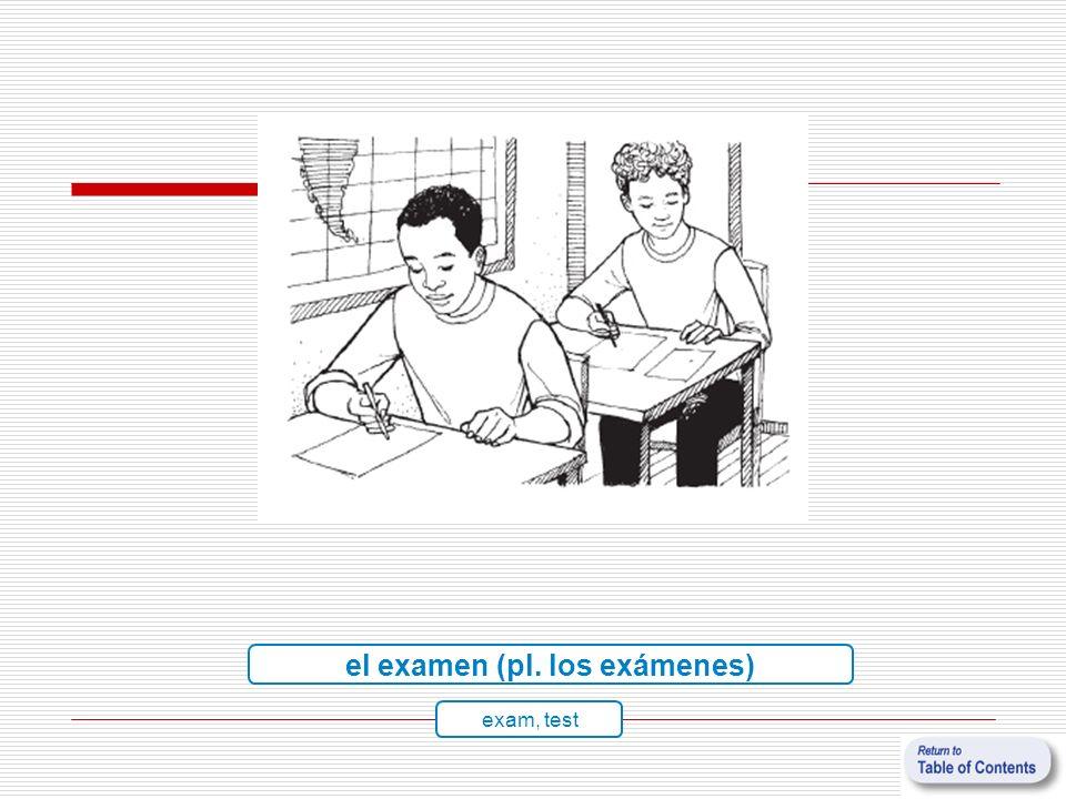 el examen (pl. los exámenes)