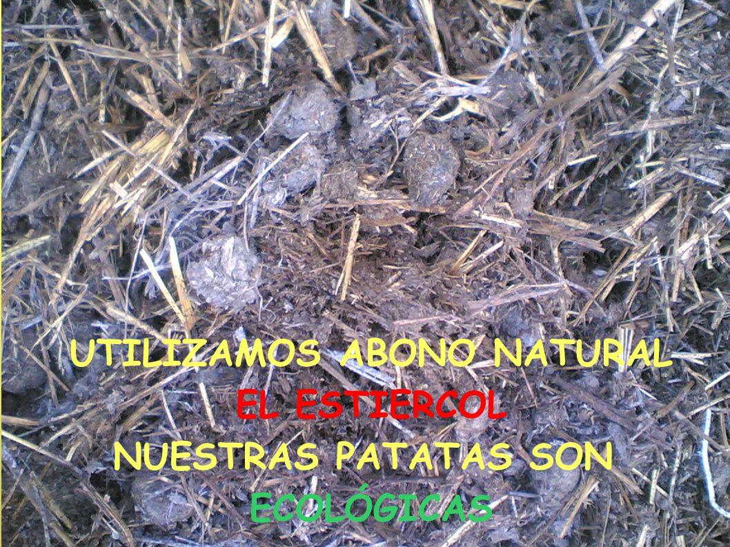 UTILIZAMOS ABONO NATURAL