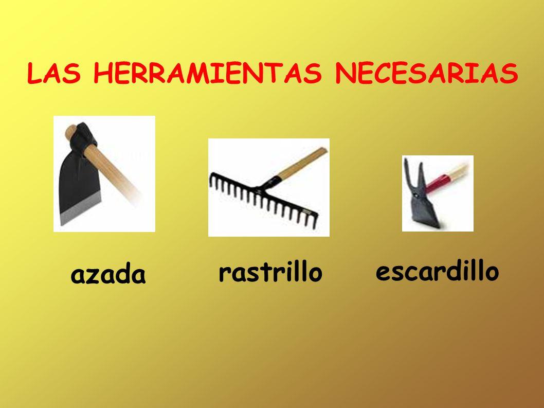 LAS HERRAMIENTAS NECESARIAS