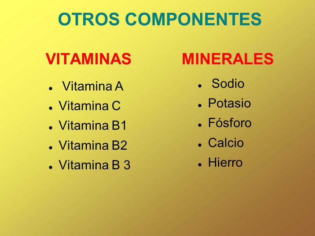 OTROS COMPONENTES VITAMINAS MINERALES