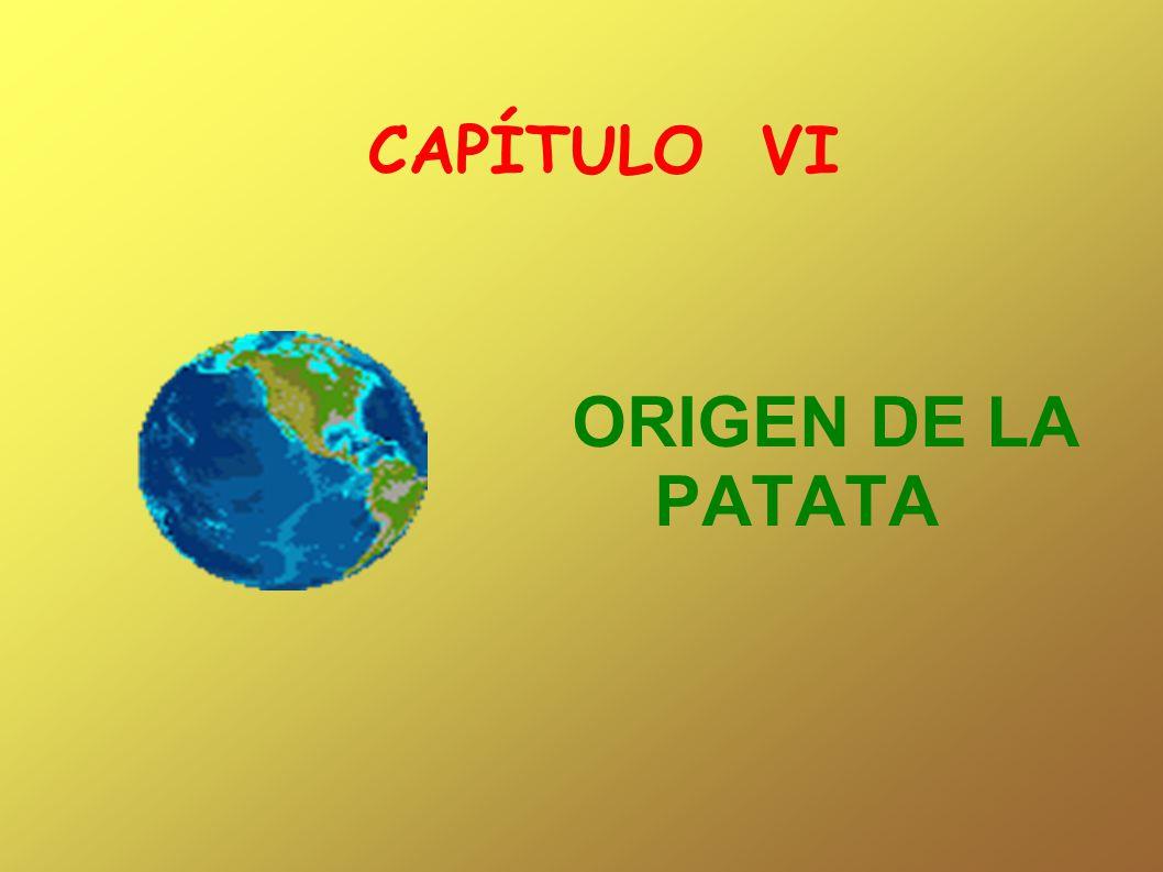 CAPÍTULO VI ORIGEN DE LA PATATA