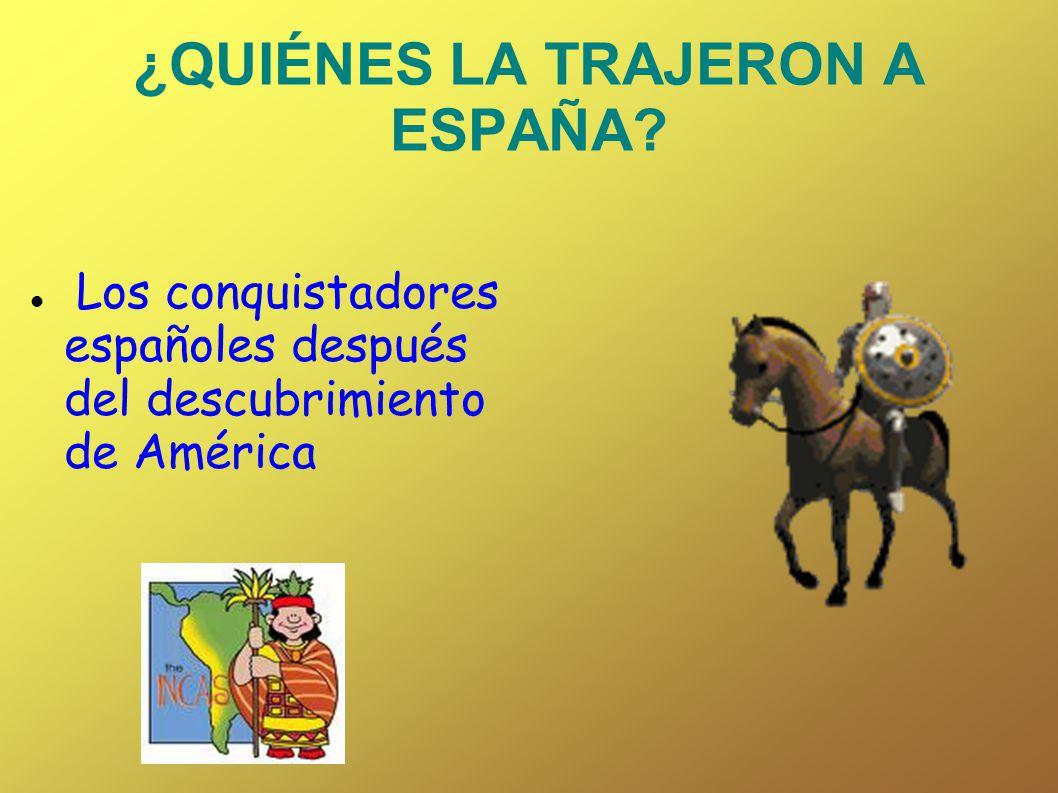 ¿QUIÉNES LA TRAJERON A ESPAÑA