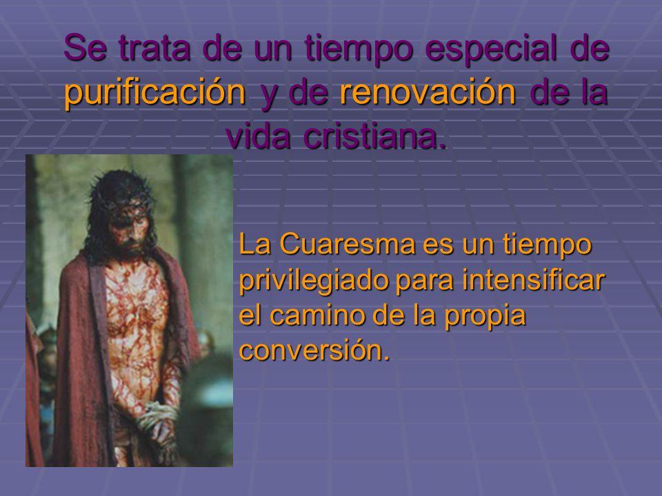 Se trata de un tiempo especial de purificación y de renovación de la vida cristiana.