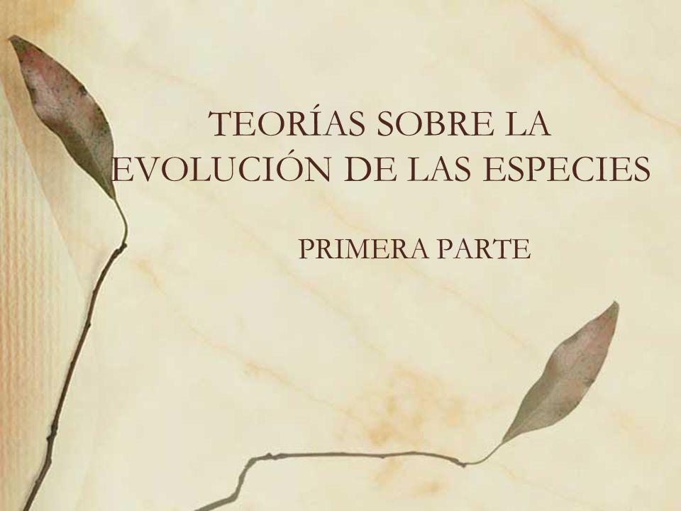 TEORÍAS SOBRE LA EVOLUCIÓN DE LAS ESPECIES