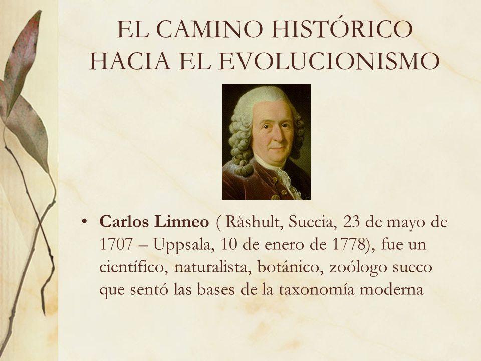EL CAMINO HISTÓRICO HACIA EL EVOLUCIONISMO