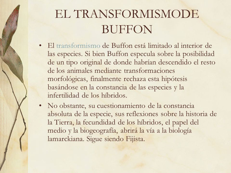 EL TRANSFORMISMODE BUFFON