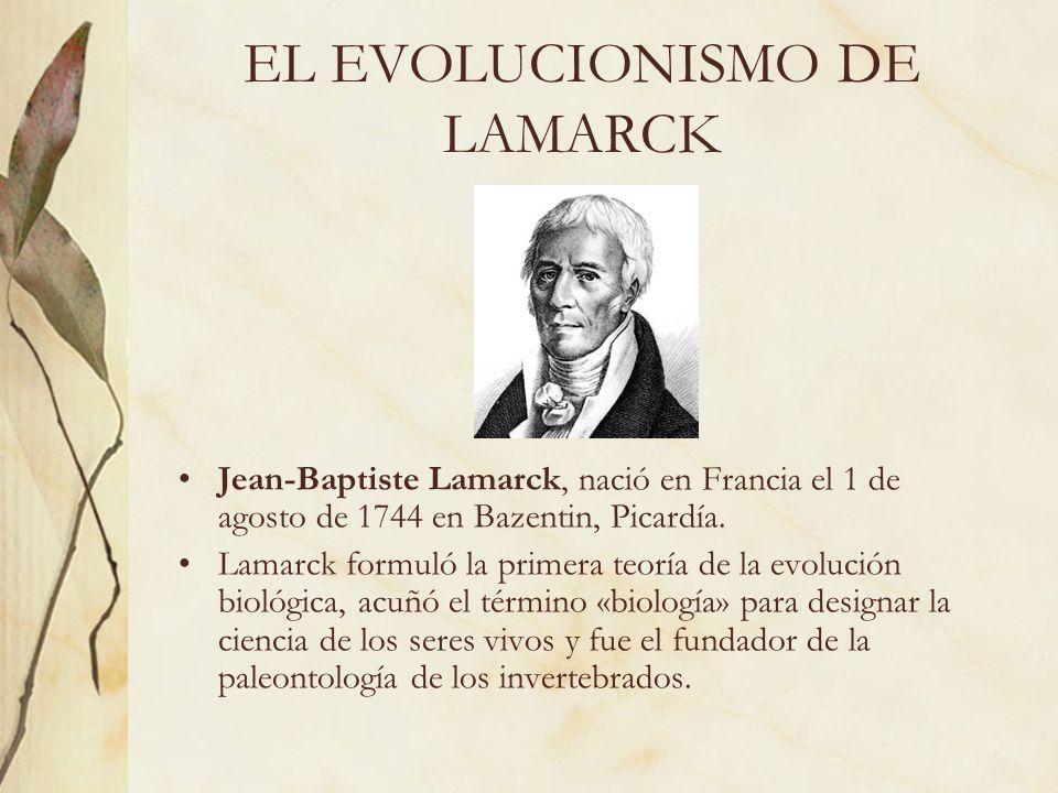 EL EVOLUCIONISMO DE LAMARCK