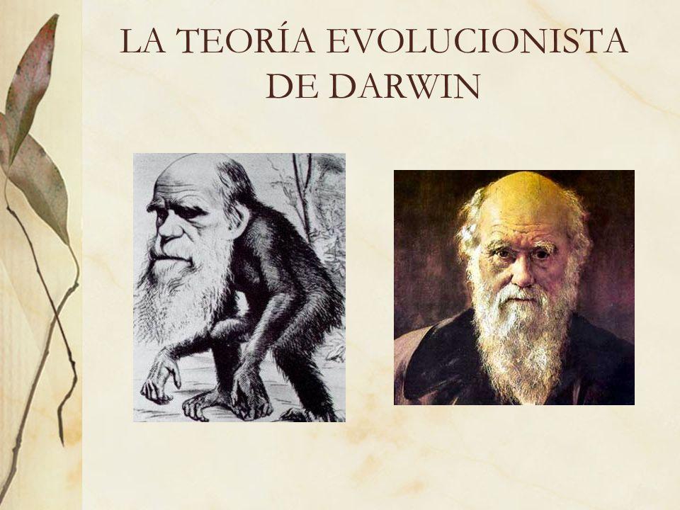 LA TEORÍA EVOLUCIONISTA DE DARWIN
