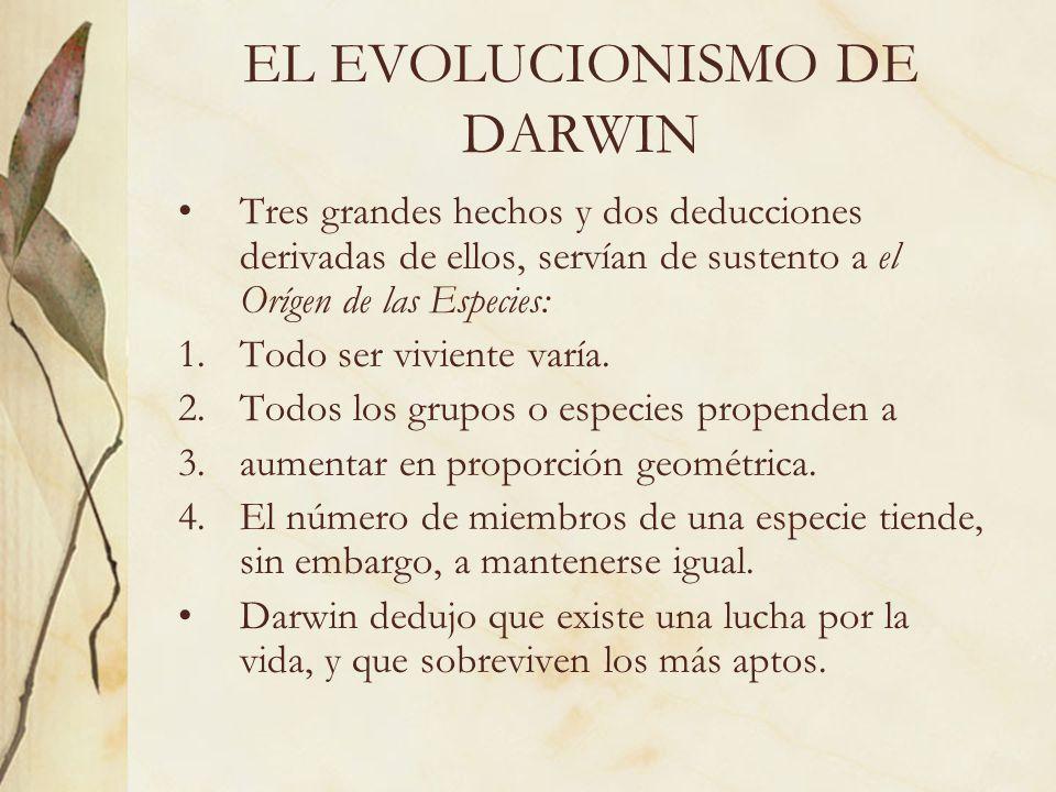 EL EVOLUCIONISMO DE DARWIN