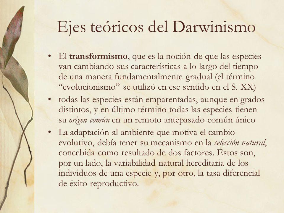 Ejes teóricos del Darwinismo