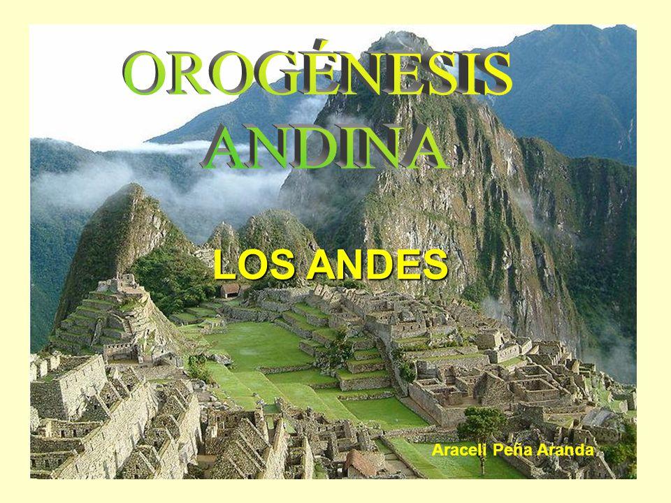 OROGÉNESIS ANDINA LOS ANDES Araceli Peña Aranda