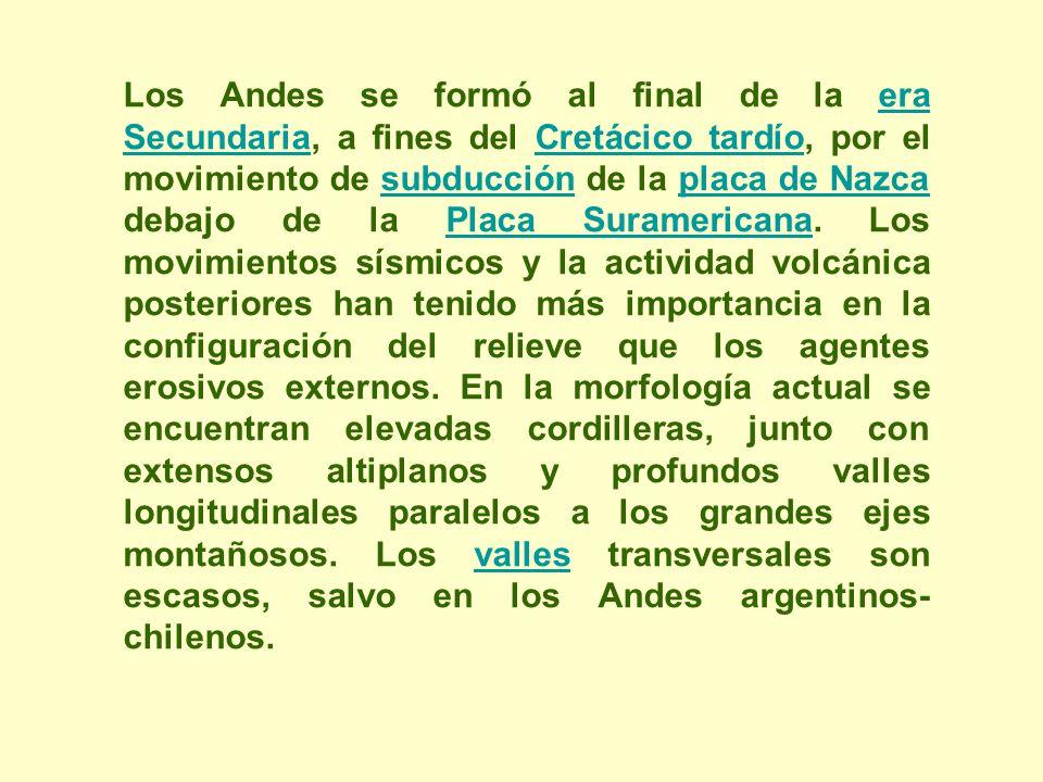 Los Andes se formó al final de la era Secundaria, a fines del Cretácico tardío, por el movimiento de subducción de la placa de Nazca debajo de la Placa Suramericana.