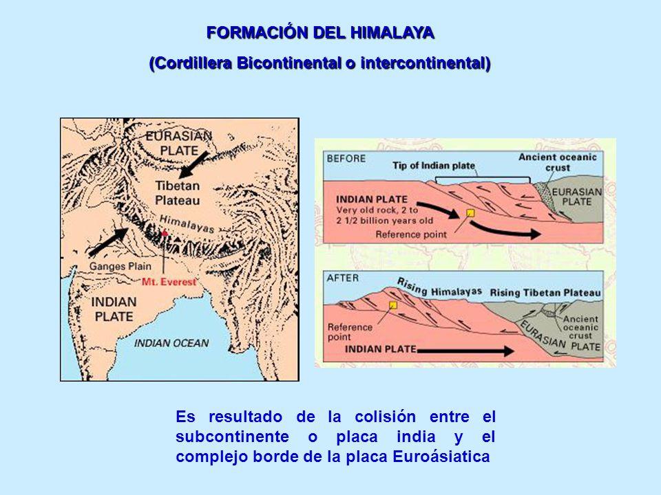FORMACIÓN DEL HIMALAYA (Cordillera Bicontinental o intercontinental)