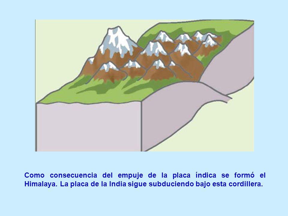 Como consecuencia del empuje de la placa índica se formó el Himalaya