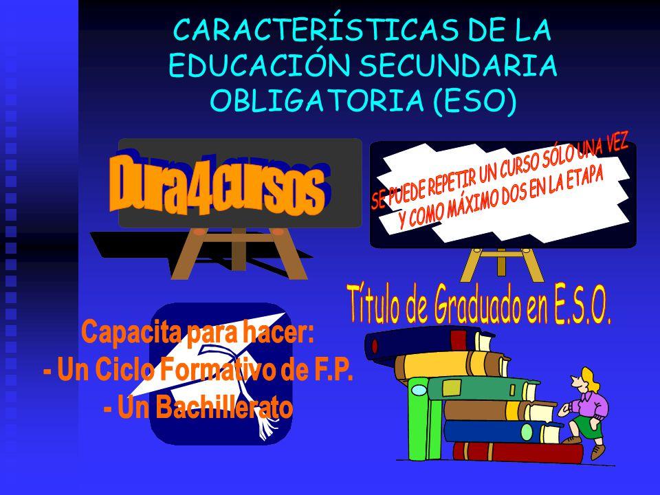 CARACTERÍSTICAS DE LA EDUCACIÓN SECUNDARIA OBLIGATORIA (ESO)
