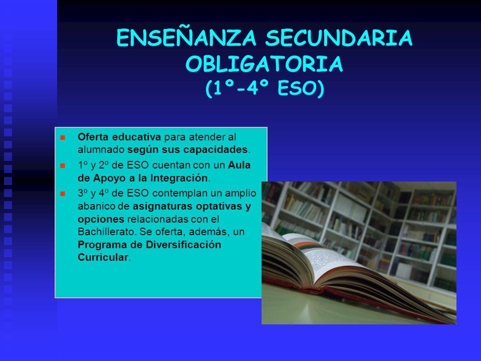 ENSEÑANZA SECUNDARIA OBLIGATORIA (1º-4º ESO)