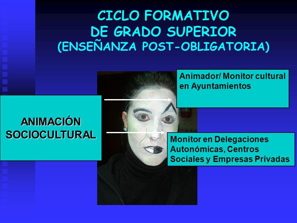 CICLO FORMATIVO DE GRADO SUPERIOR (ENSEÑANZA POST-OBLIGATORIA)