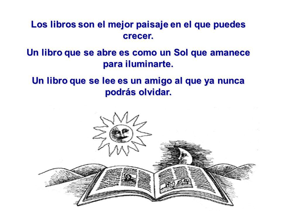 Los libros son el mejor paisaje en el que puedes crecer.