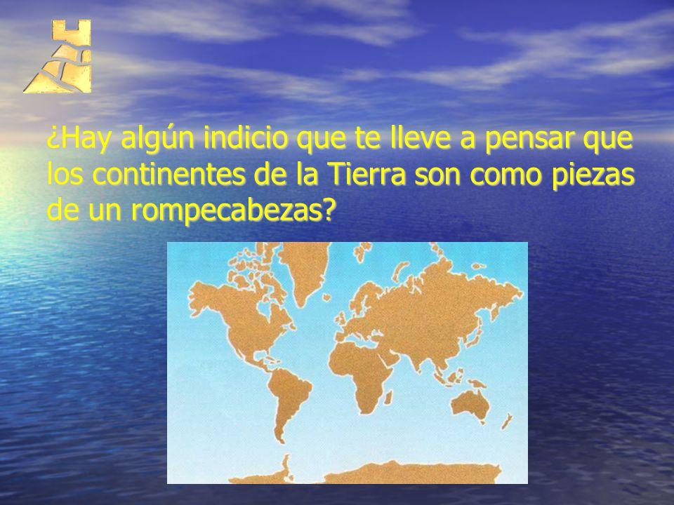 ¿Hay algún indicio que te lleve a pensar que los continentes de la Tierra son como piezas de un rompecabezas