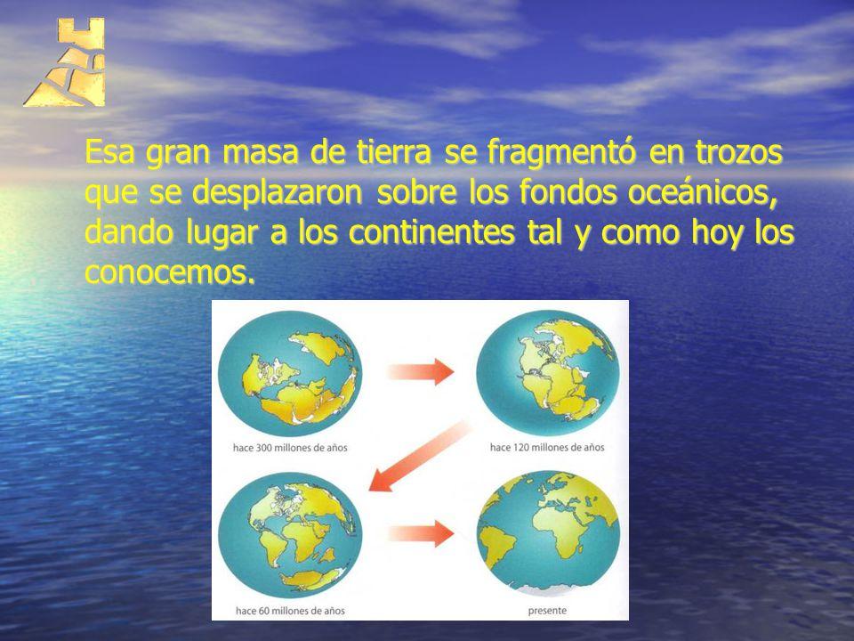 Esa gran masa de tierra se fragmentó en trozos que se desplazaron sobre los fondos oceánicos, dando lugar a los continentes tal y como hoy los conocemos.