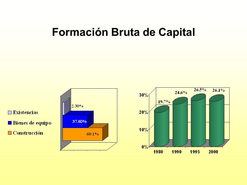 Formación Bruta de Capital