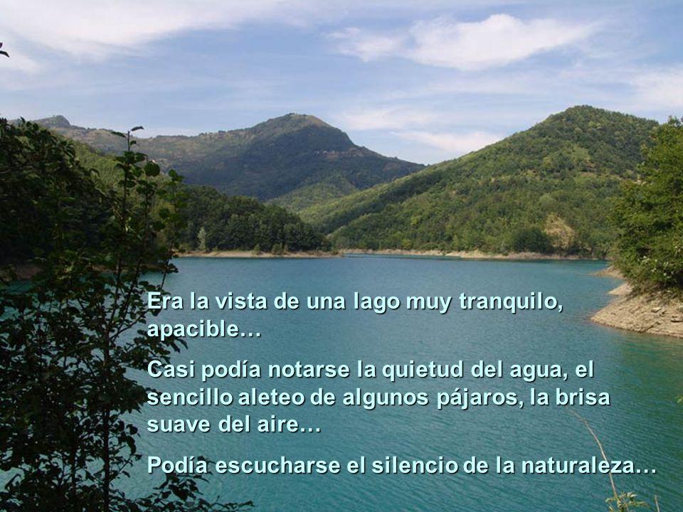 Era la vista de una lago muy tranquilo, apacible…