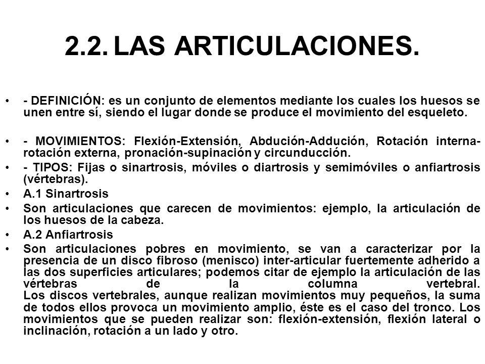 2.2. LAS ARTICULACIONES.