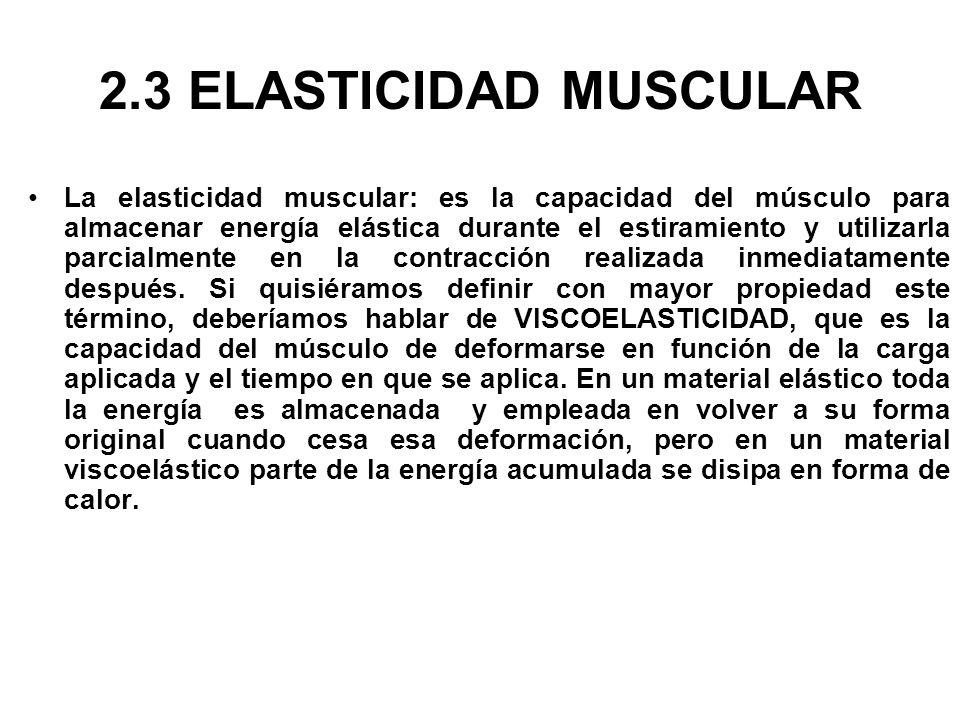 2.3 ELASTICIDAD MUSCULAR