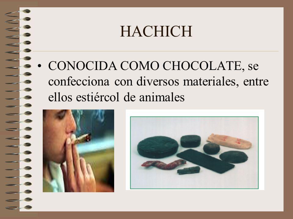 HACHICH CONOCIDA COMO CHOCOLATE, se confecciona con diversos materiales, entre ellos estiércol de animales.