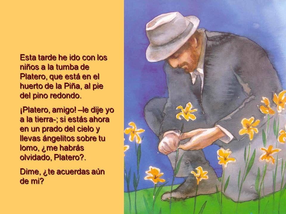 Esta tarde he ido con los niños a la tumba de Platero, que está en el huerto de la Piña, al pie del pino redondo.