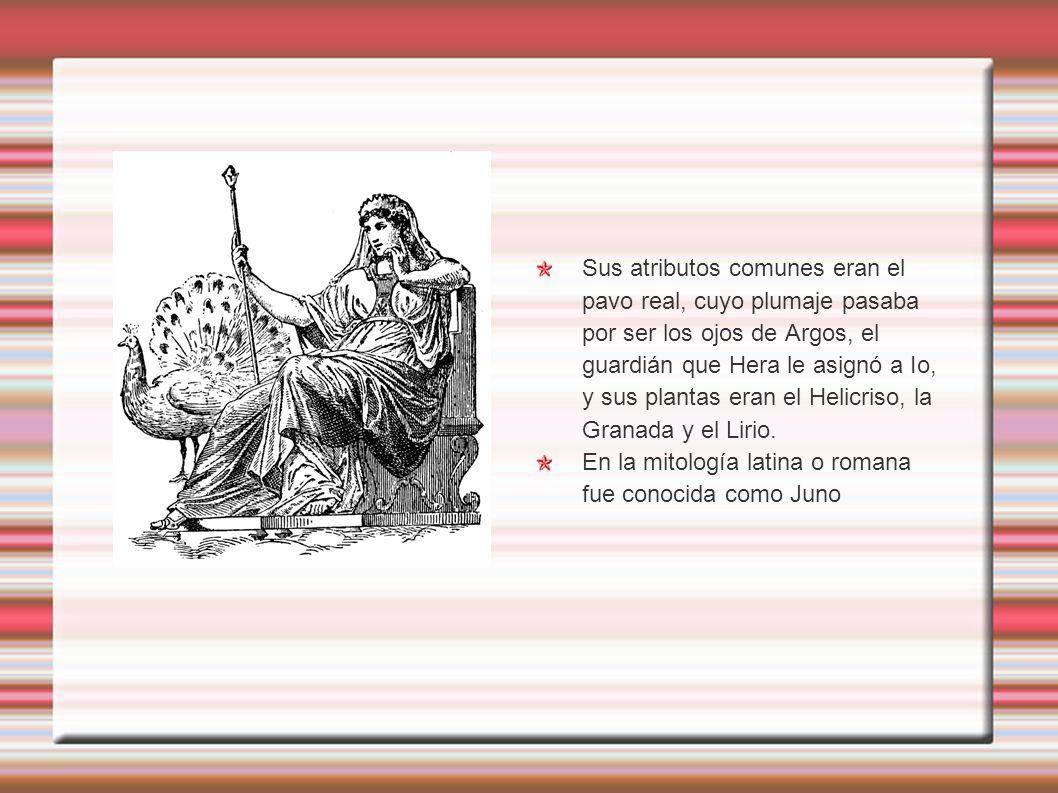Sus atributos comunes eran el pavo real, cuyo plumaje pasaba por ser los ojos de Argos, el guardián que Hera le asignó a Io, y sus plantas eran el Helicriso, la Granada y el Lirio.