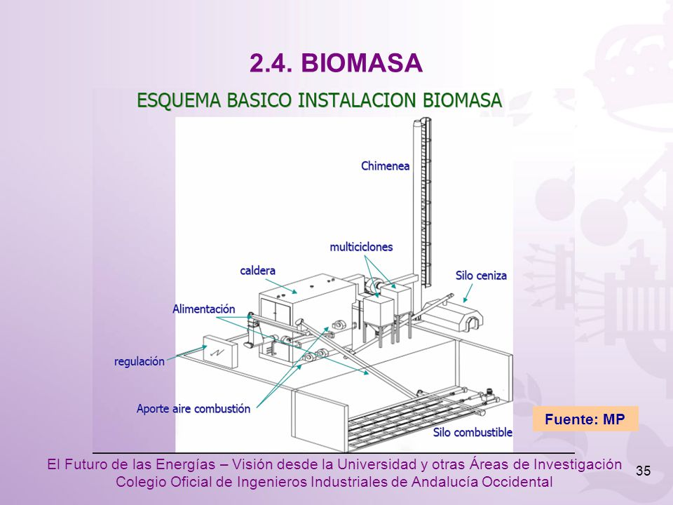 2.4. BIOMASA Fuente: MP
