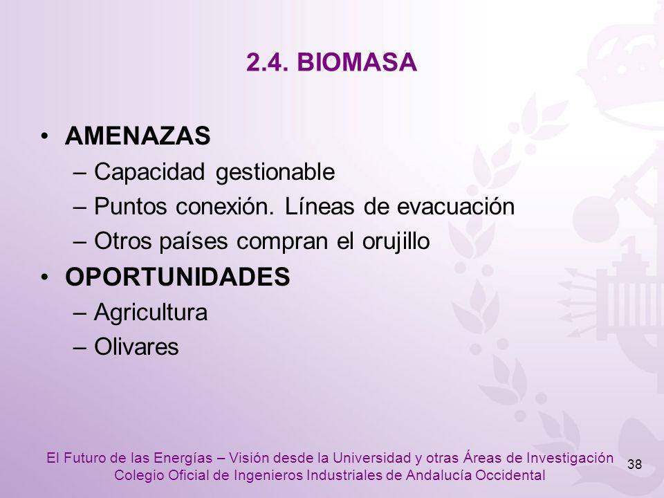 2.4. BIOMASA AMENAZAS OPORTUNIDADES Capacidad gestionable