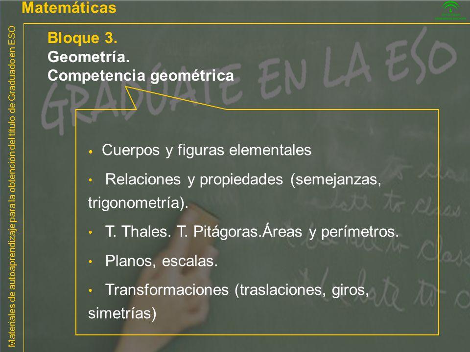 Competencia geométrica