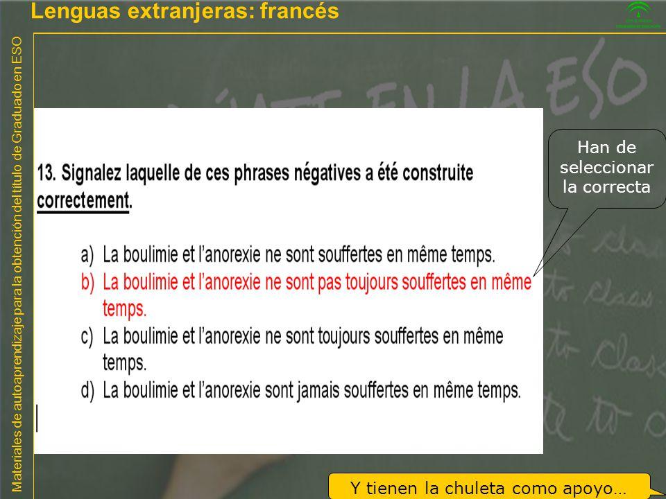Lenguas extranjeras: francés