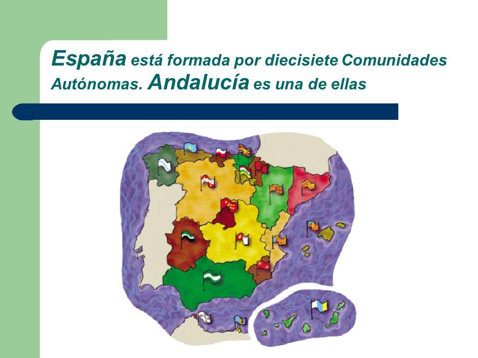España está formada por diecisiete Comunidades Autónomas