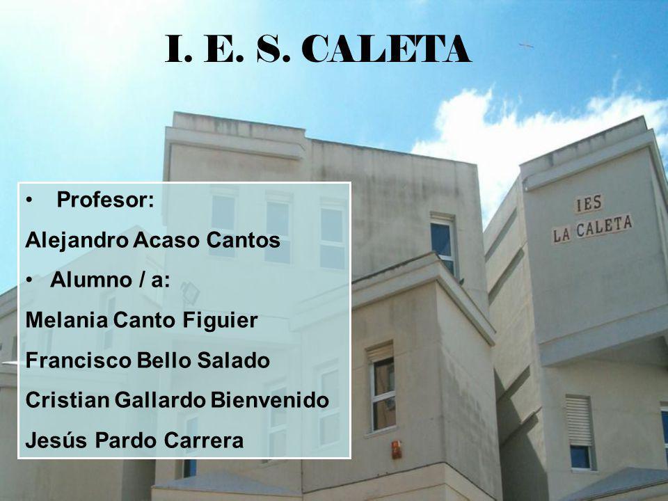 I. E. S. CALETA Profesor: Alejandro Acaso Cantos Alumno / a: