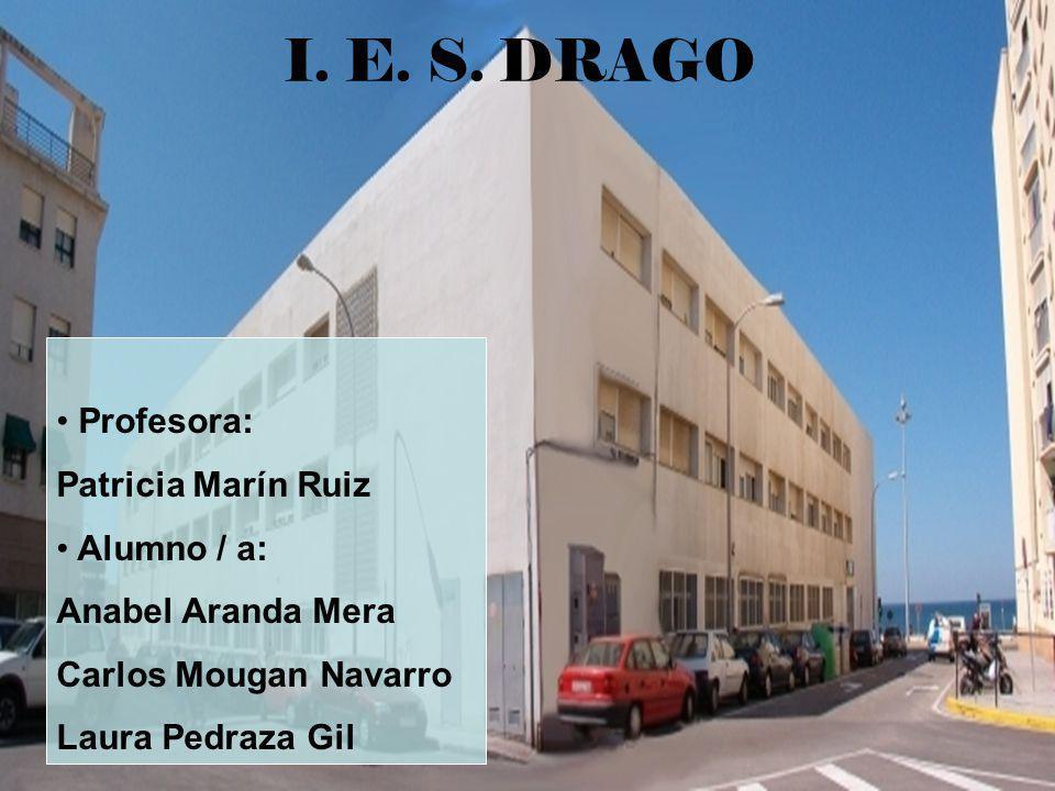 I. E. S. DRAGO Profesora: Patricia Marín Ruiz Alumno / a: