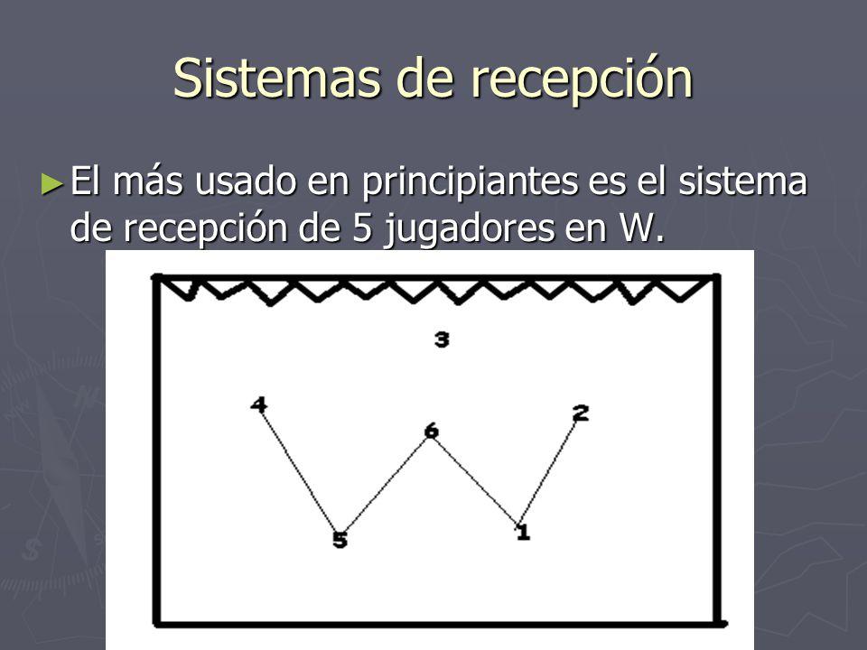 Sistemas de recepción El más usado en principiantes es el sistema de recepción de 5 jugadores en W.