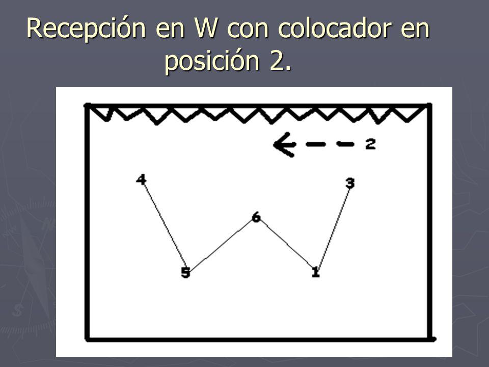 Recepción en W con colocador en posición 2.