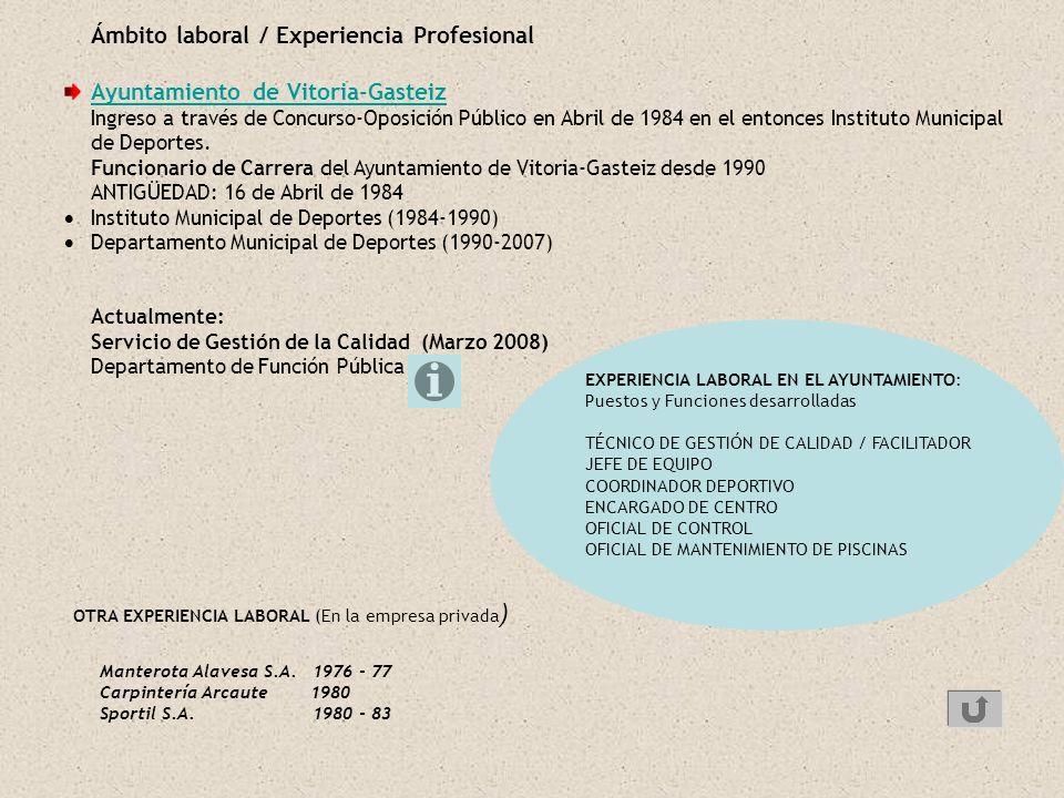 OTRA EXPERIENCIA LABORAL (En la empresa privada)