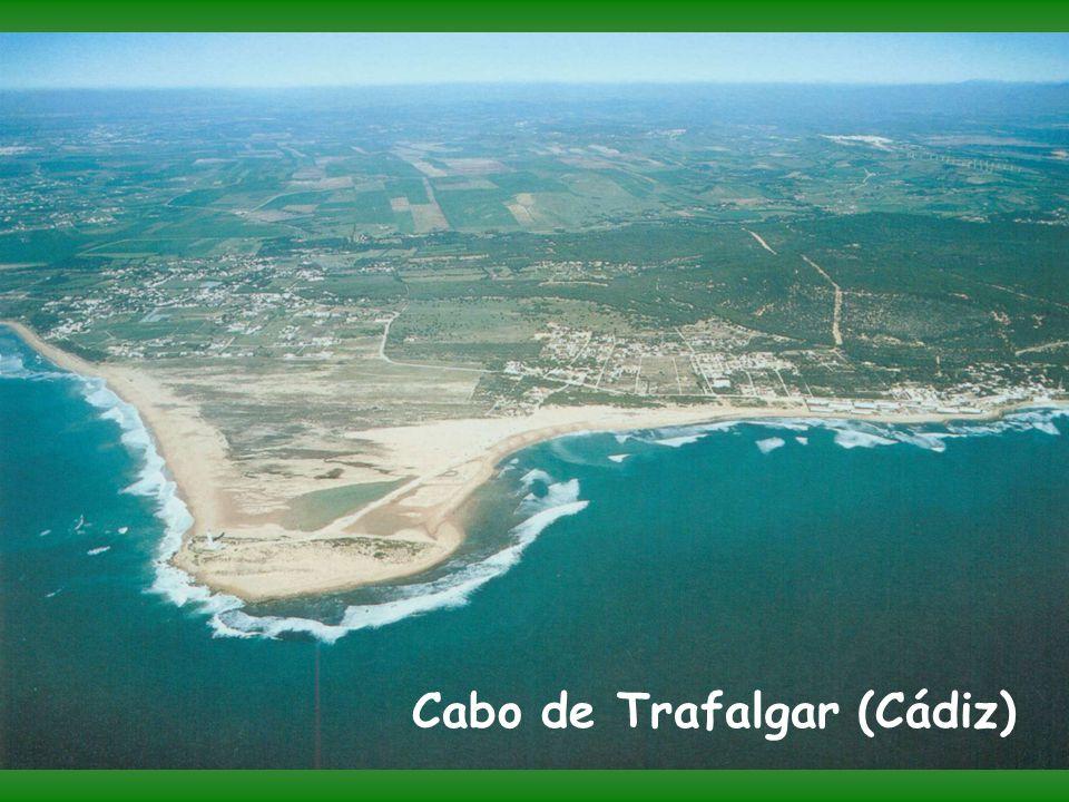 Cabo de Trafalgar (Cádiz)