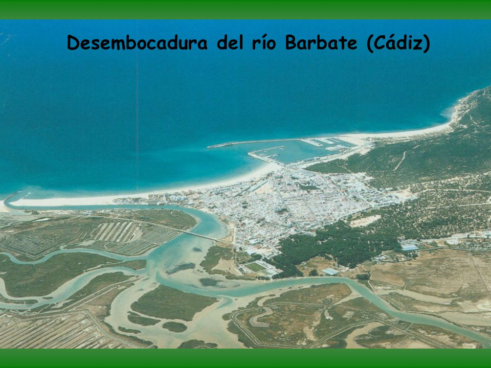 Desembocadura del río Barbate (Cádiz)