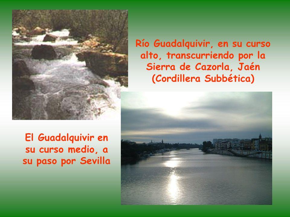 El Guadalquivir en su curso medio, a su paso por Sevilla