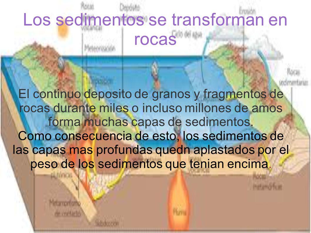 Los sedimentos se transforman en rocas