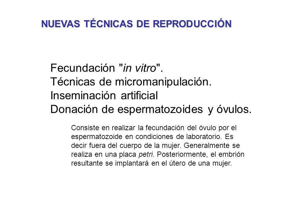 Técnicas de micromanipulación. Inseminación artificial