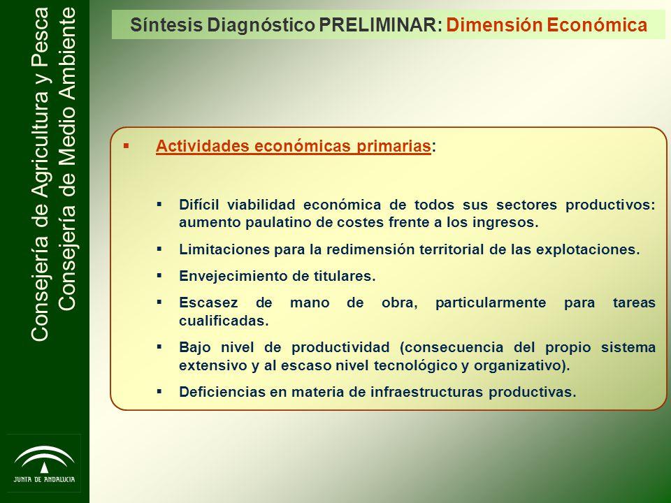 Síntesis Diagnóstico PRELIMINAR: Dimensión Económica