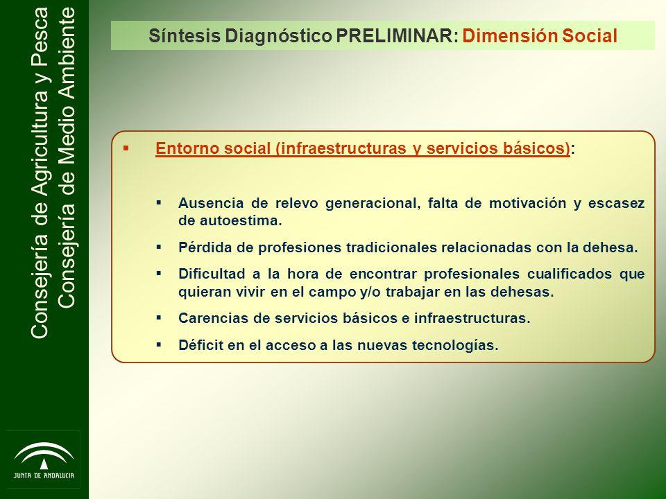 Síntesis Diagnóstico PRELIMINAR: Dimensión Social