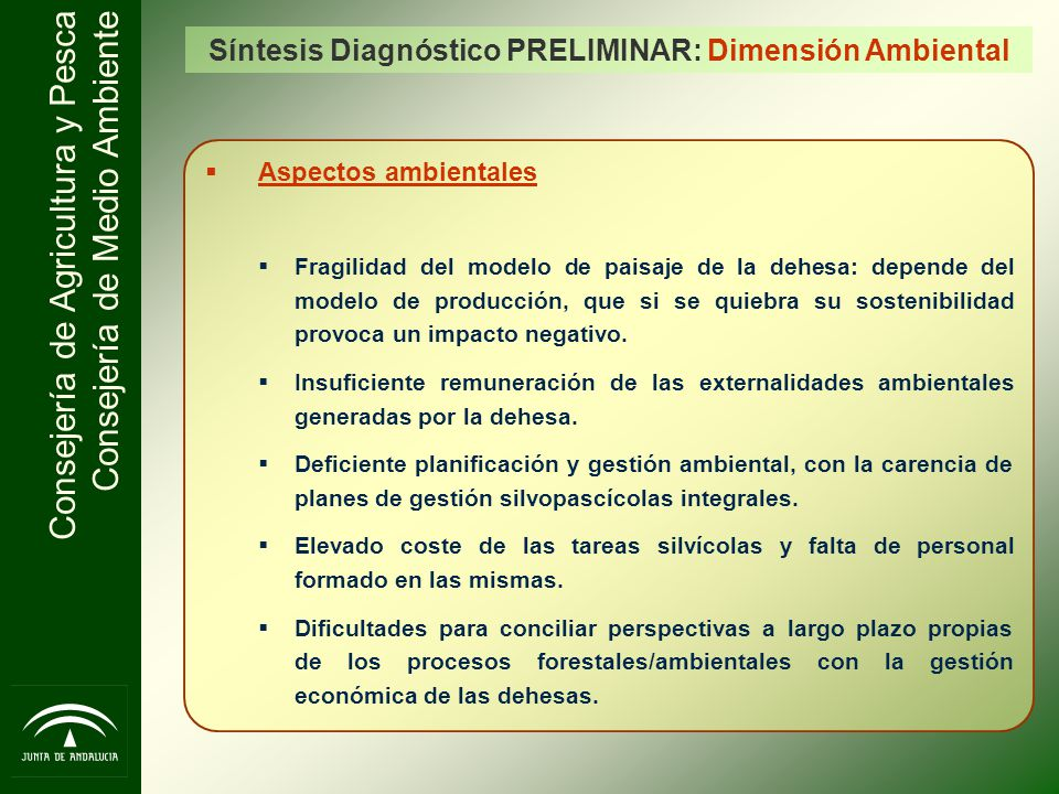 Síntesis Diagnóstico PRELIMINAR: Dimensión Ambiental